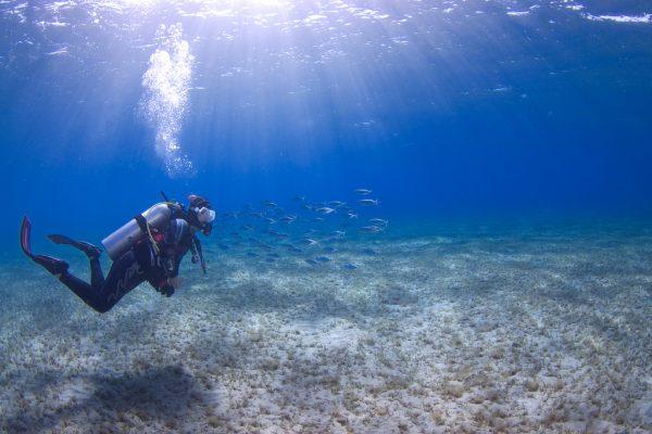 Malta and Gozo diving holiday